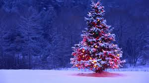 Merry Christmas All!